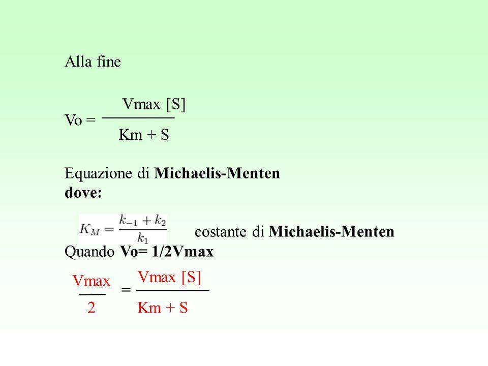 Alla fine Vo = Vmax [S] Km + S. Equazione di Michaelis-Menten. dove: costante di Michaelis-Menten.
